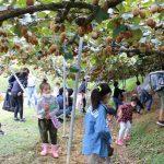 親子で食と農を学ぶ/女性大学「わくわく親子食農体験教室」