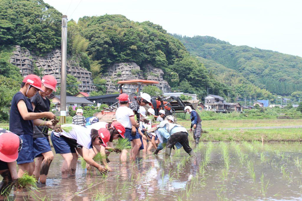 元気に田植え 米作りスタート!